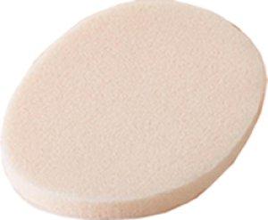 画像1: 粘土吸いとり専用スポンジ (1)